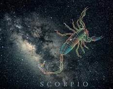 ScorpioImage4