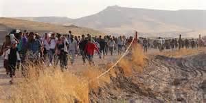 Syrianrefugee10