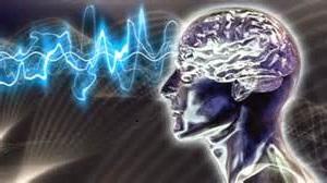 consciousnessbrainwaves